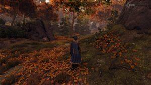 I přes uklidňující podzimně zbarvenou krajinu byli jeleni na Teer Frade neustále poněkud neklidní...